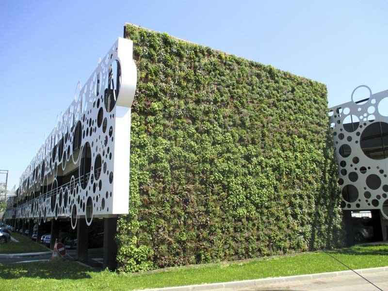 Etude pour encourager les toitures et façades végétalisées
